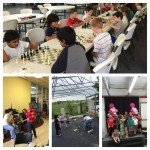 Frisco-Chess-Club-Tournaments texas